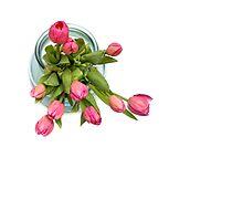 Grateful tulips by Bob Daalder