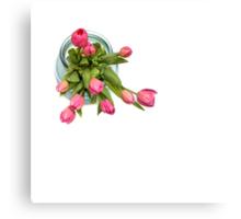 Grateful tulips Canvas Print