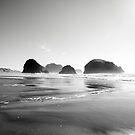 Oregon coast by SandrineBoutry