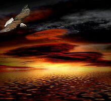 Under His Wings of Love by Charles & Patricia   Harkins ~ Picture Oregon