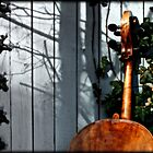 Cello and Ivy by ArtbyDigman