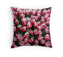 Tulips in Christmas colors Throw Pillow