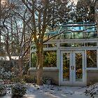A Winter Treasure by Marilyn Cornwell