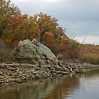 Fall Shoreline by Paul Sturdivant