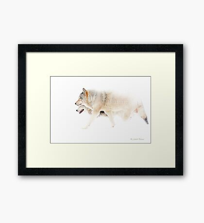 Le chant du Loup - Hunting in the mist Framed Print
