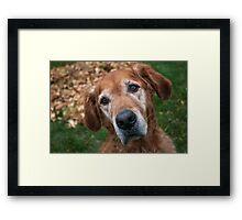 Bella Portrait Framed Print