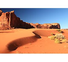 Sand Dune and Sage Brush, Monument Valley Photographic Print