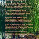 Weeping Willow (Art and Writing) by Charldia