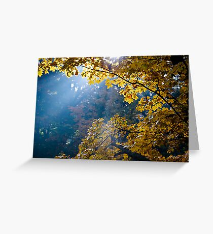 Light Ray Greeting Card