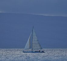 Pacific Sailing  by Steve St.Amand