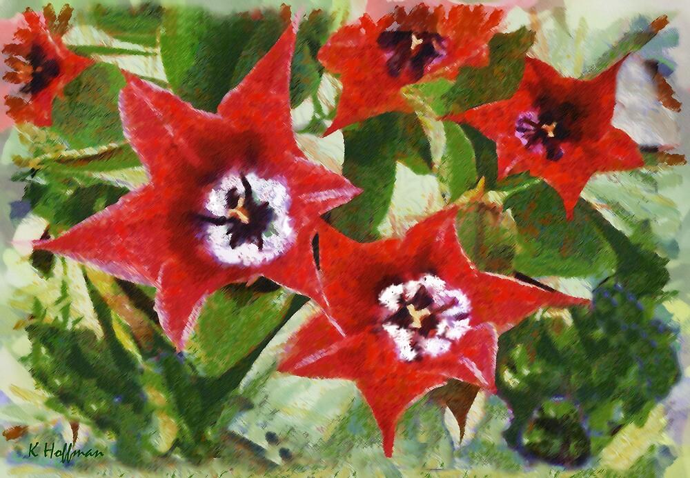 Xmas Tulips by Kenneth Hoffman