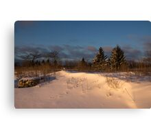 The Morning After the Snowstorm Canvas Print