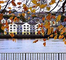 Late November On The River Foyle by Fara