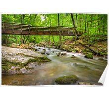 Bridge Over The Cascades Poster