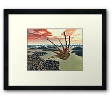 Planetfall Framed Print