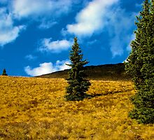 The Lone Ranger by Burr Tweedy