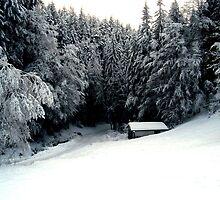 Snow Hut by rainerkphotogra