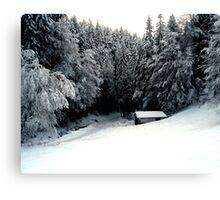 Snow Hut Canvas Print