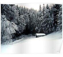 Snow Hut Poster