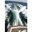 Deep sea series 5 - the wake by Elisabeth Dubois