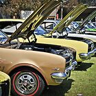 Holden Monaro 2014 by Clintpix