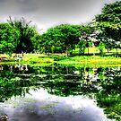 Botanic Garden,  Photography Singapore  by William  Teo Photography