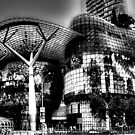 Orchard Ion, Photography Singapore  by William  Teo Photography
