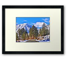 Going Home For The Holidays Framed Print