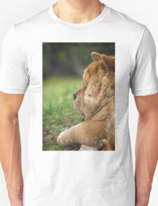 Chow-Chow dog portrait T-Shirt