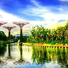 Garden by the Bay Singapore 2013 by William  Teo Photography