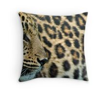 Amur Leopard (Panthera pardus orientalis) Throw Pillow