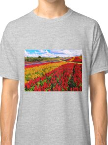 Colorful Plumed Cockscomb Lavender Flower Field Classic T-Shirt
