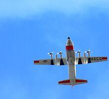 Lockheed C-130 Hercules by Laurie Puglia