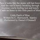 Little Patch of Blue by Joe Hupp