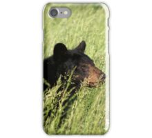 Black Bear @ Great Smoky Mountains National Park iPhone Case/Skin