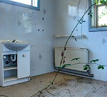 Queen Victoria's bathroom by Flossy13