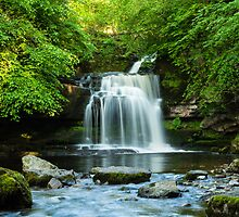 West Burton Waterfall by Eliza Donovan