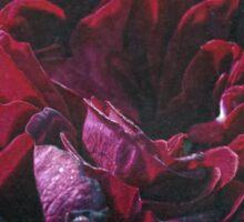 Vintage English Rose Sticker