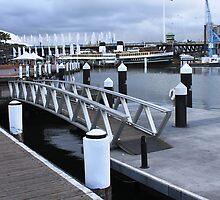 Smallest Bridge Ever? by Vicki Childs