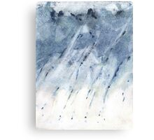 plausible weather explorations 2 Canvas Print