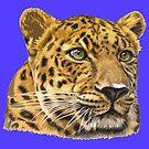 Leopard PopArt by Nicole Zeug