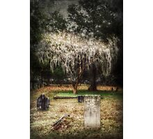 The Weeping Tree Photographic Print