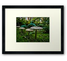 Follow Me Little Ones ~ Wild Mushrooms ~ Framed Print