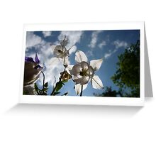 Lucid Flowers Greeting Card