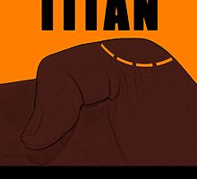In Case of Titan Break Skin by S. Daniel McPhail