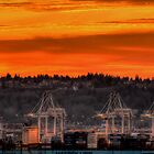 Sunset on the Cranes by Sue Morgan