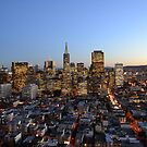 A view of the buildings in San Fransisco by kellimays