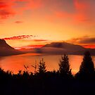 Sunrise Mt MAXWELL, Maple Bay, BC, Canada III by Andrew  MCKENZIE
