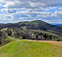 Walking the Malverns by vivsworld