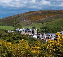 View Over Holyrood Palace by Eliza Donovan
